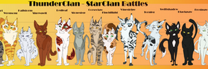 ThunderClan-CharactersSizeChart-StarClanBattles