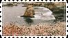 .:Stamp:. Flower by Jiraychi