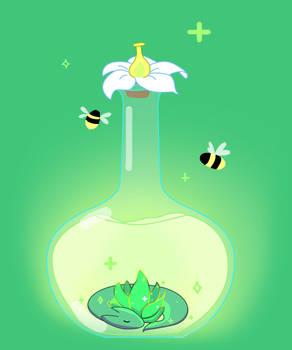 Aloe Vera Dragon Honey