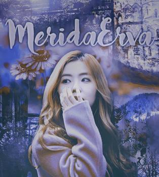 Deviantart ID by MeridaErva