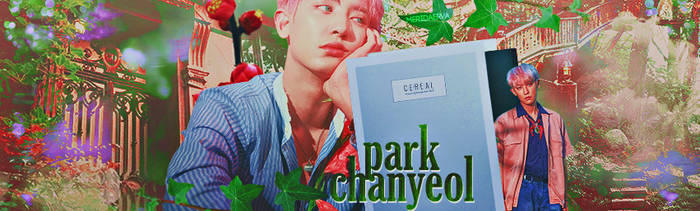 Park Chanyeol KoKoBop Cover by MeridaErva