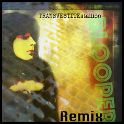 Blooper remix with several Tranny tunes Ts Design