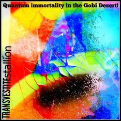 Quantum Immortality in the Gobi Desert cd cover