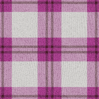 Plaid 1 by Sharandra