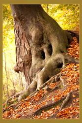 Tree by Sharandra