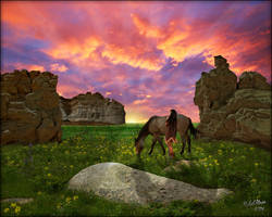 Castle Gardens Sunset by MichaelAtman