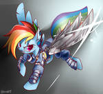 Rainbow Dash in different dimensions
