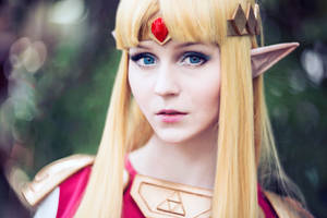 The Princess of Hyrule