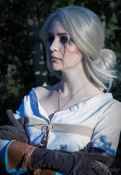 Cirilla Fiona Elen Riannon (The Witcher 3 ver.)