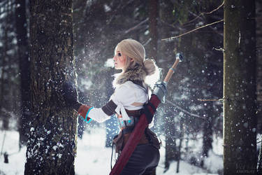 The Witcher 3: Wild hunt - White Frost