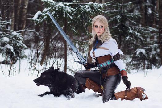 Ciri and Black Wolf