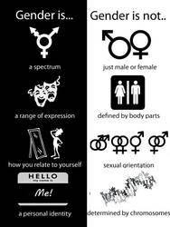 Gender is, Gender is not by snoogan2dope