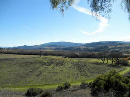 Wine Country Santa Ynez Valley by LinaraQ