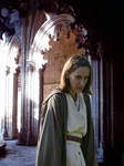 Conflict on Naboo