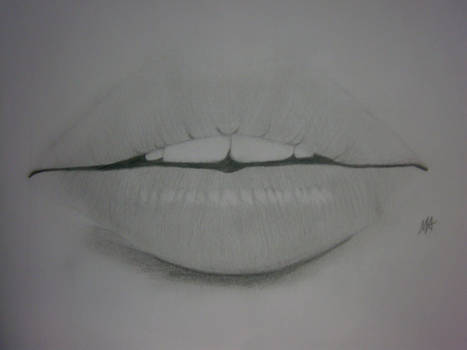 Just Some Lips
