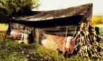 Old farm storage