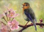 Bird Song For Spring