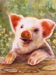 La Vie En Rose - Oink Oink