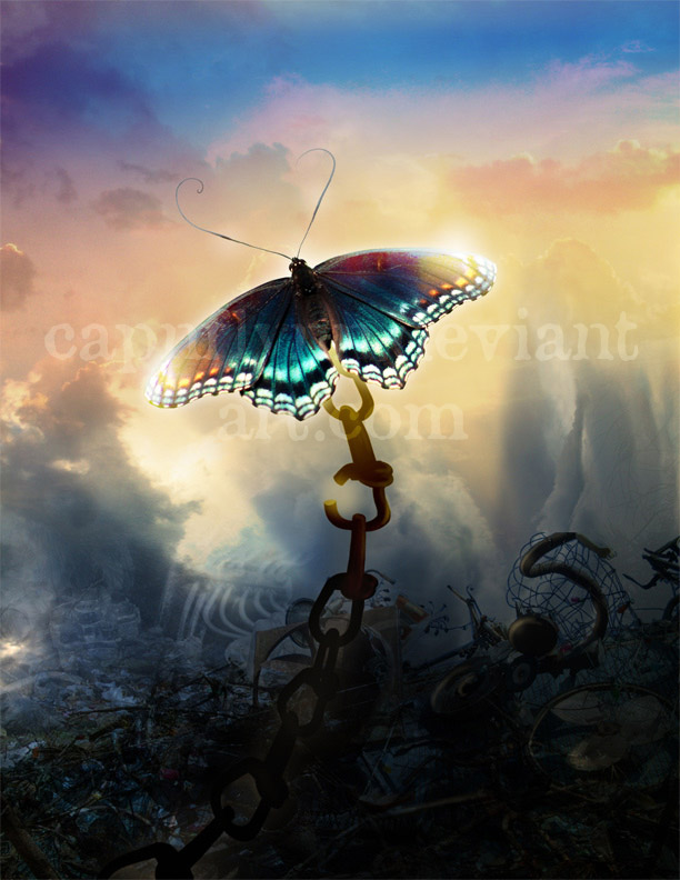 Iron Butterfly Wallpaper Pictures to Pin on Pinterest - PinsDaddy