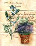 Vintage Flower and Pot