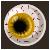 Eye Candy Golden Iris
