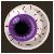 Eye Candy Purple Iris
