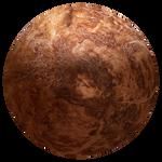 Coconut Planet