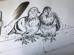 The two pigeons