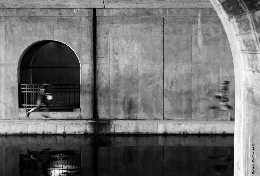 The ledge runners by OpticalIlluzens