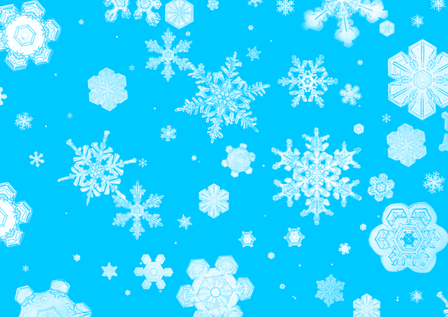 .:Snowflakes:. by CurePassion99