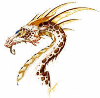 Dragon by Draugar
