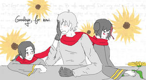 APH: Going Away