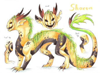 Ref sheet: Sharun by Drerika