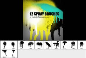 12 Spray Brushes