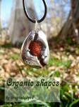 Organic shapes