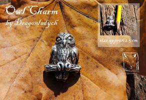 Silver Owl by dragonladych