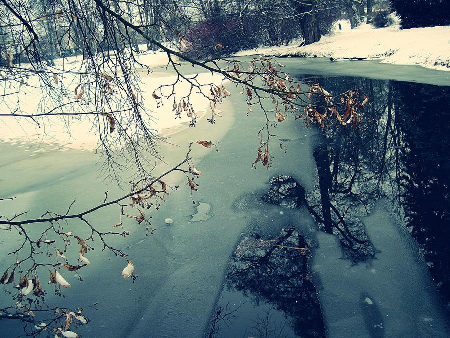 freezed by Reyrey33