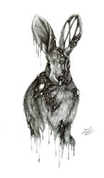 Rabbit by Mixielion