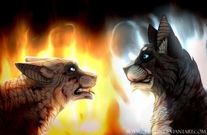   Ivypool + Hawkfrost   Betrayal   by qhyron