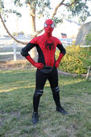 The Spectacular Spider-man Costume by strongcactus
