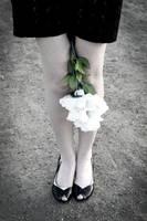 Legs by SaintFluffy