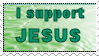 I Support Jesus by Amy-pink