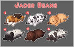 Jader Bean Batch #1 (CLOSED)
