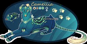 Domestic Jader- Camellia [Bean- Grown]