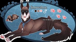 Domestic Jader- Snowshoe [Bean- Grown]