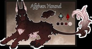 Domestic Jader- Afghan Hound [Bean- Grown]