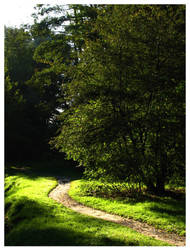 Path to Tinuviel... by Rahdiel