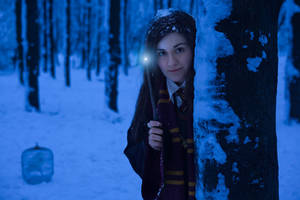 Harry Potter Cosplaygirl - night snowy forest