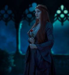 Sansa Stark cosplay - Night Rose