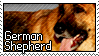 Stamp - German Shepherd by MauserGirl